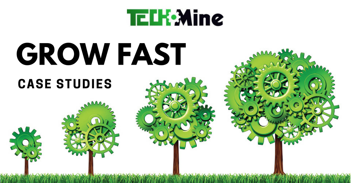 TechMine grow fast case studies